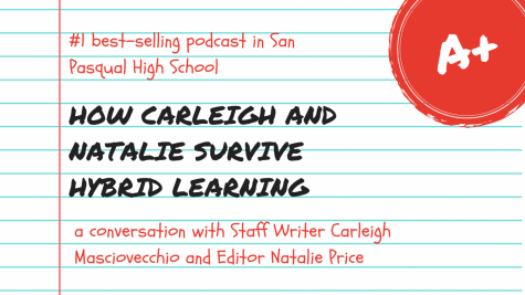 How Carleigh and Natalie survive Hybrid learning