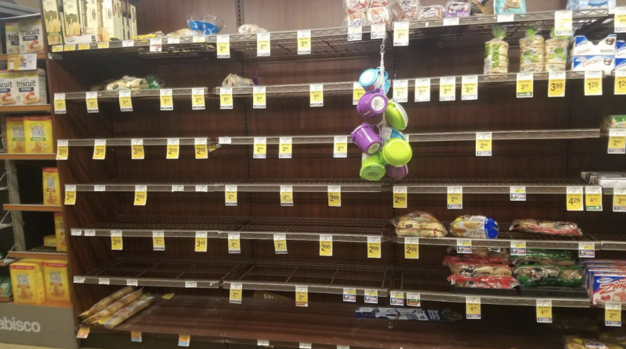 Food Stores During Pandemic
